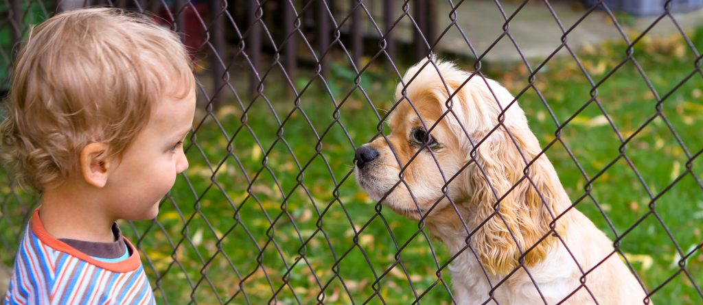 Little boy and dog behind fence - face to face look